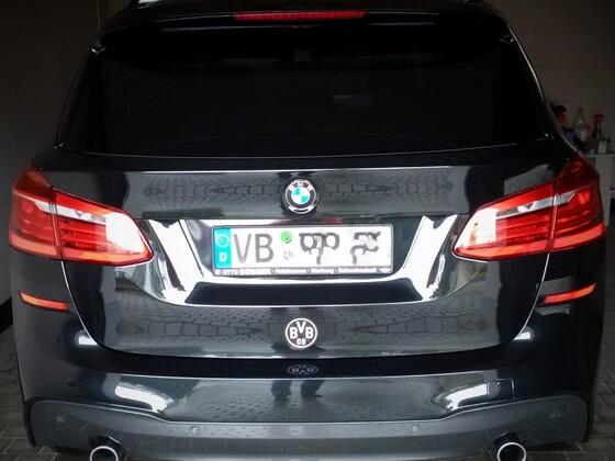 Natürlich der BVB 09